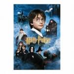 "HARRY POTTER - Puzzle - ""Movie Poster"" - RIESIG - 50x70cm - 1000 Teile - Daniel Radcliffe"